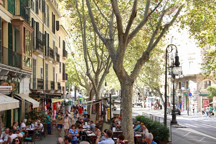 Tui_Marathon_Mallorca_2014_Palma2_04