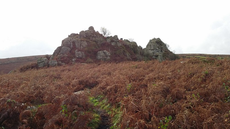 Greator Rocks #dartmoor #sh