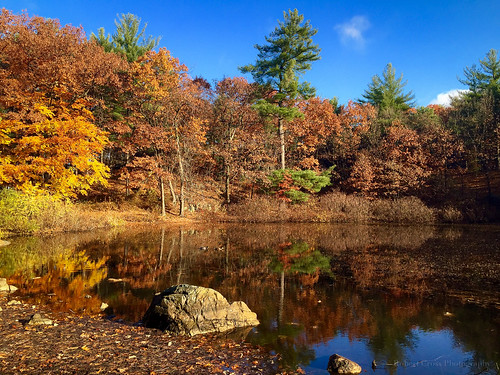 autumn lake reflection boston forest landscape massachusetts newengland bluesky melrose iphone iphoneography iphone6