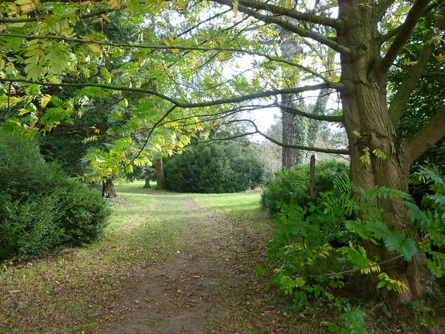 Scampston walled garden day 2 (18)