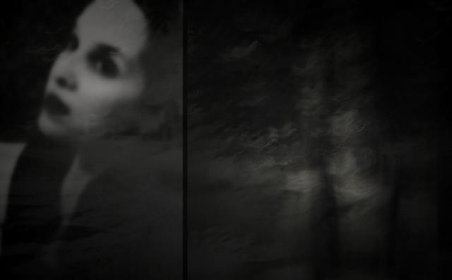 d i a n e p o w e r s - when the trees whispered...