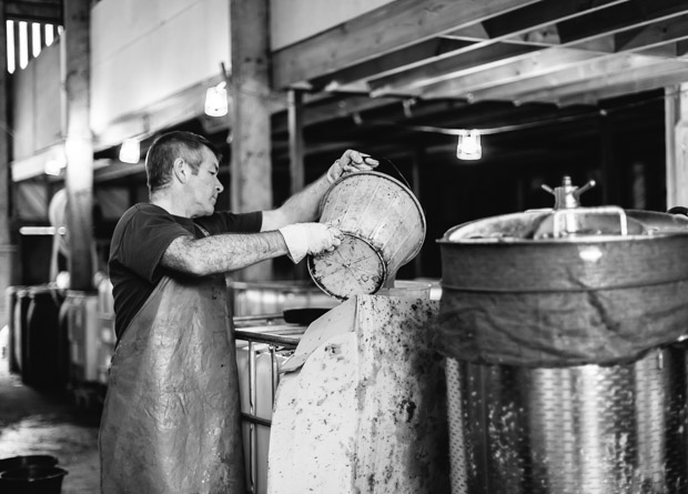 Cider making process Bulmers by Sarka Babicka Photography