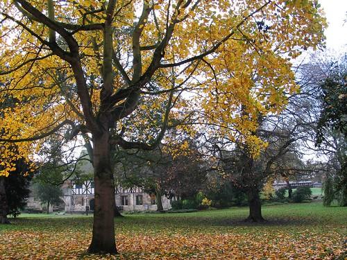 York Nov 14 (36)