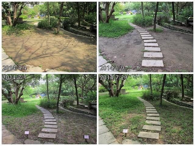 生態池步道的改變。