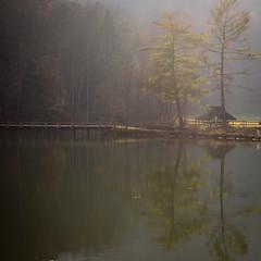 Steele Creek (crop3)