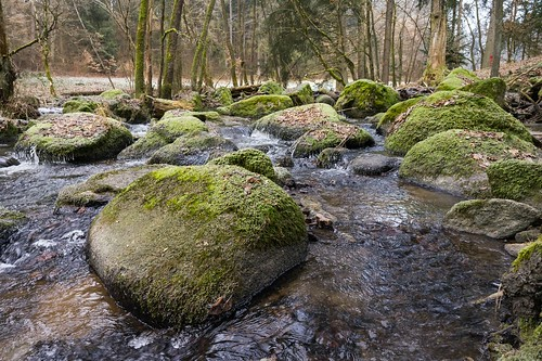 Green stones in water