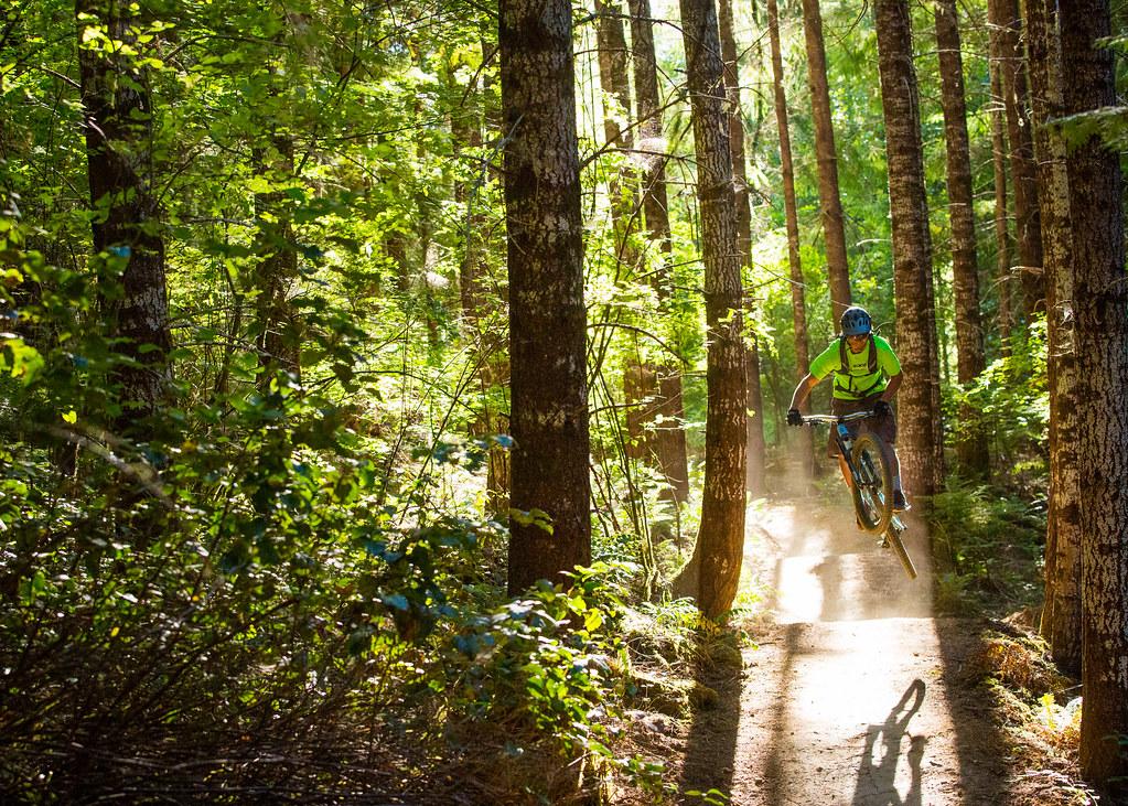 Alsea Falls Trail System