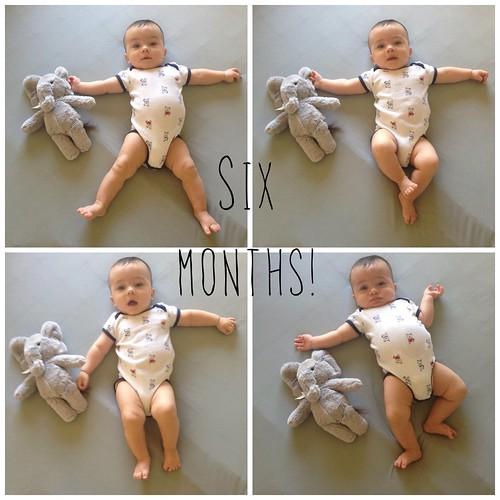 Riley: 6 Months!