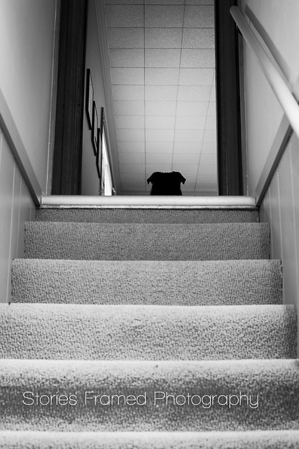111. | top of the stairs.