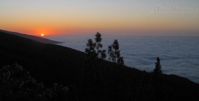 view 0008 Tenerife, Canary Islands, Spain