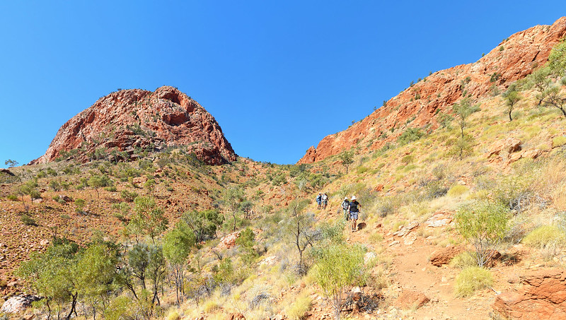 Descent from Brinkley Bluff - Larapinta Trail