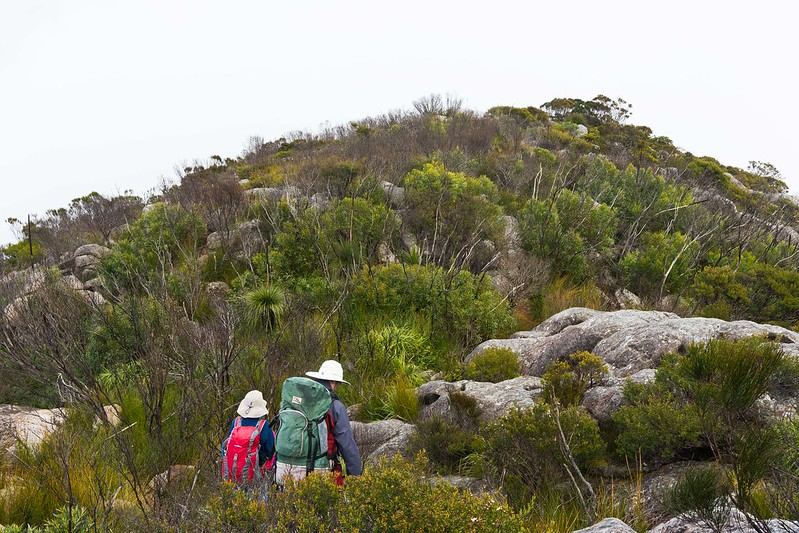 Into the Mist, the walk back to camp - Mount Barney National Park