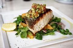 20151022-01-Blue eye trevalla with orange and rocket salad and avocado salsa at Maldini in Hobart