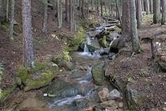 Canyons, Rock Creek
