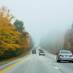 Into+the+Fog