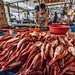 Big Eyed Red Snapper in fish market by FotoGrazio