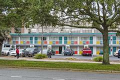 the thunderbird motel