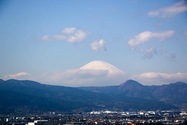 20150211-曽我丘陵-0135.jpg