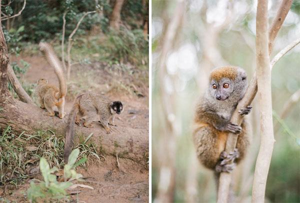 RYALE_Madagascar_Blog2_019