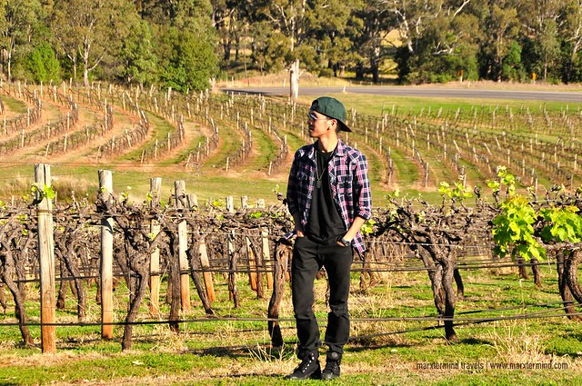 marxtermind at Hunter Valley NSW