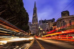 Catch the Transamerica Connection
