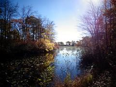 Mill Pond Park -- Autumn (78)