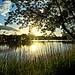 Le lac de Millas au petit matin