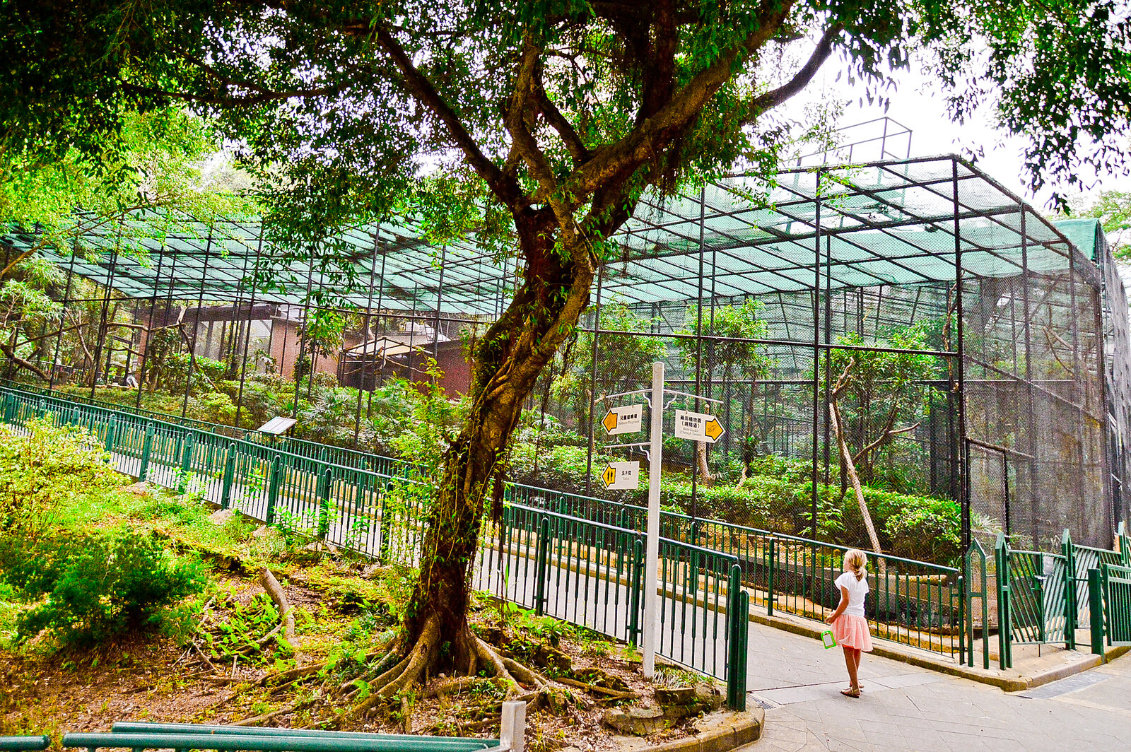 When Not To Visit The Hong Kong Zoological Botanical Gardens Angie James Do Stuff