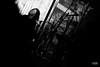 DSC04525 by we_love_vegetal_noise_music