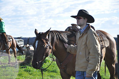 2014 Ranch Horse Competition
