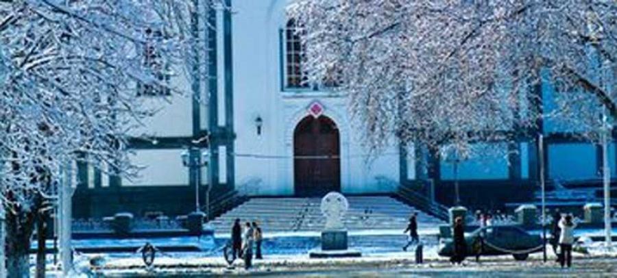 Новогодние каникулы в Краснодаре