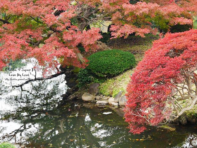 日本東京自由行新宿御苑庭園景點 (46)