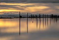 Port Gardner Bay
