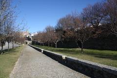 Muralha e Castelo de Miranda do Douro (Ruínas)