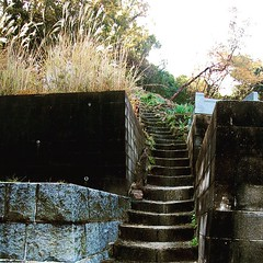 Staircases litter the hills of Saka, a small village in the Hiroshima Prefecture. Up and down I wondered, never seeing another soul. Even if I had run into someone I'm not sure I would have asked what my Great Uncle said to when he herd I was coming to Ja