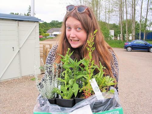 Secret Herb Garden again