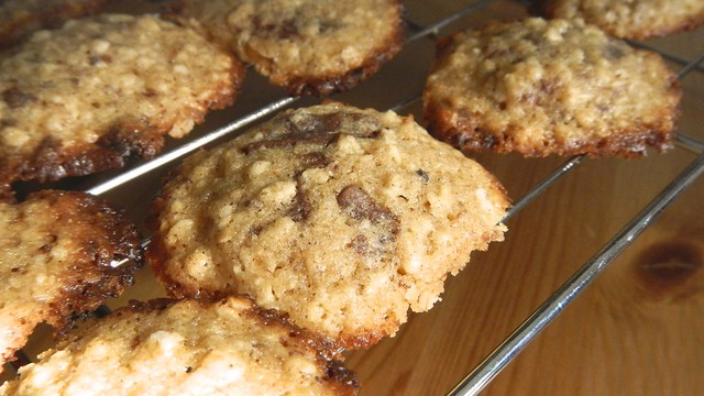 Oatmeal Chocolate Chunkies 17