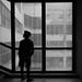 Through a window by Ciuri