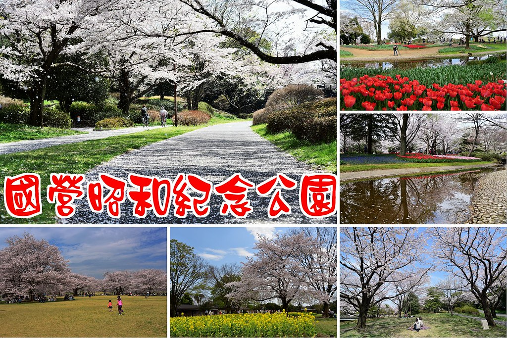 國營昭和紀念公園