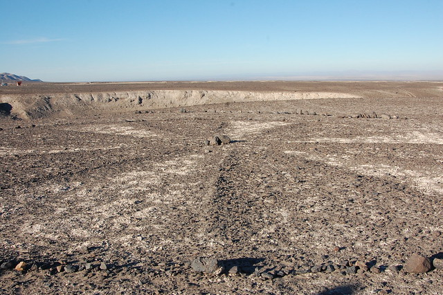 Desert Asterick, Atacama Desert, Tarapacá, Chile