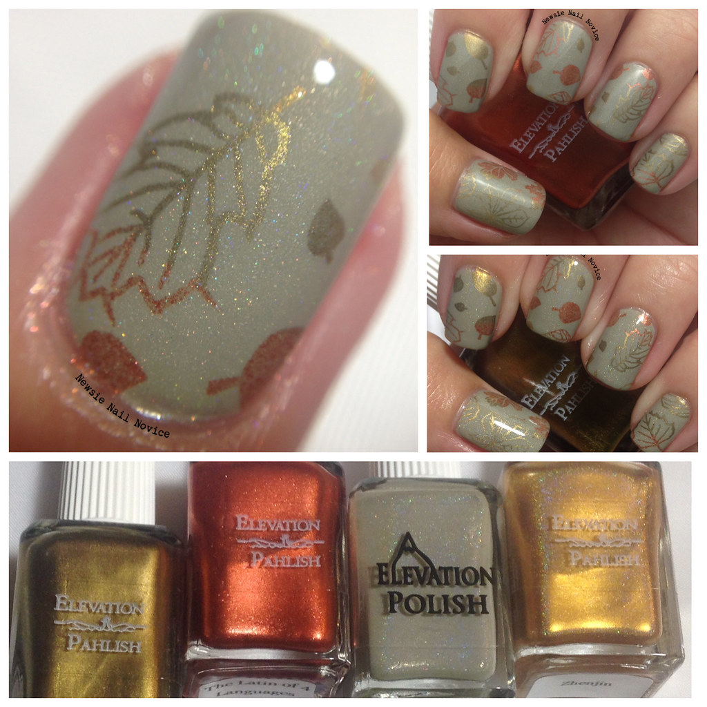 Fall Nails featuring Elevation Polishes | Newsie Nail Novice