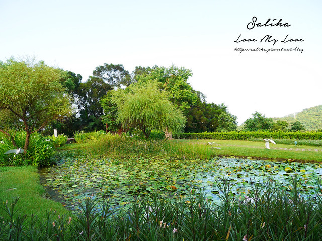 宜蘭爬山踏青旅遊景點仁山植物園 (31)