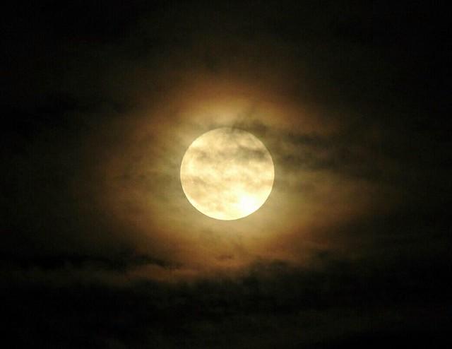Superluna, Nikon COOLPIX P610