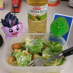 alfie and pinkie pie approve of my lunch choices #caesarsalad #omnomnom