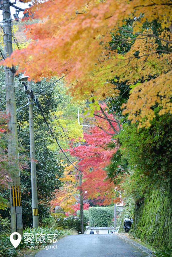京都賞楓景點 琉璃光院 44