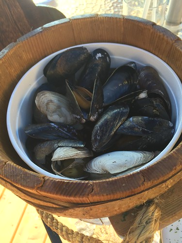 Mussels and clams.