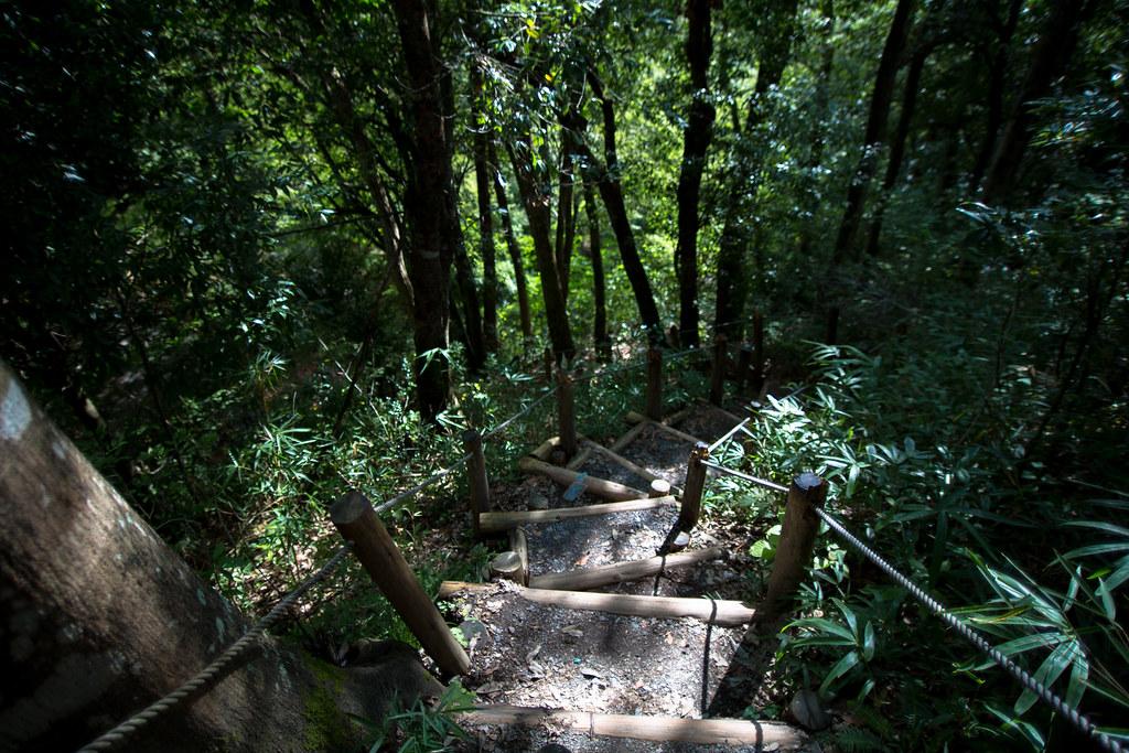 八幡城 遊歩道