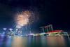 A Nation Celebrates #4