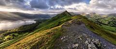 Catbells Ridge