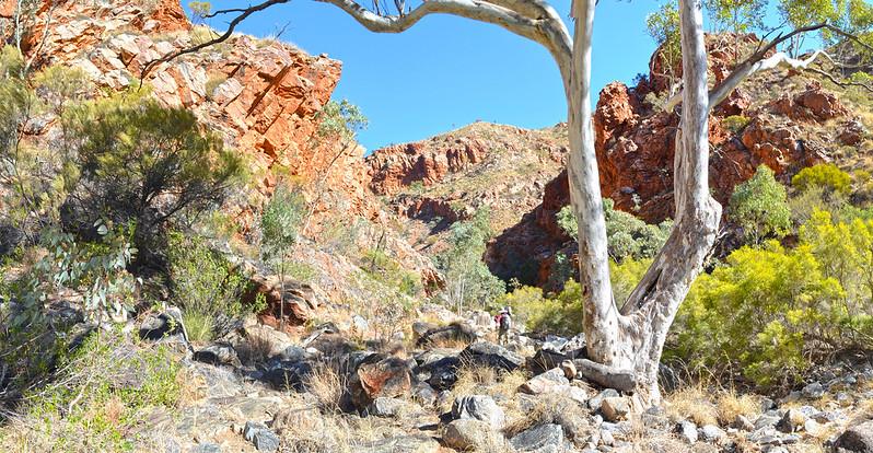Hugh Gorge - Larapinta Trail
